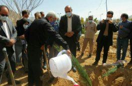 مراسم درختکاری به پاس زحمات مدافعین سلامت و تجلیل از شهدای شهرستان استهبان
